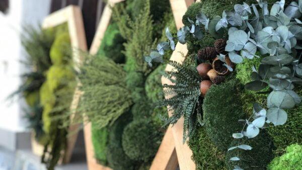 rame din lemn cu plante decorative